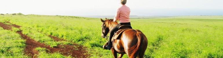 Riding on Molokai