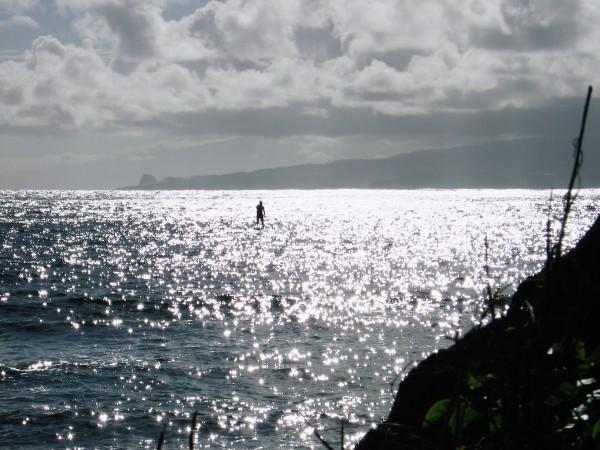 Molokai Stand-up Paddler