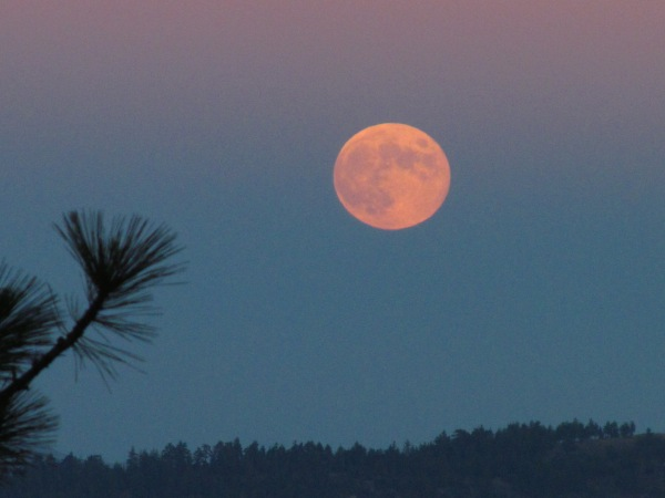 Full Moon Pink Eclipse