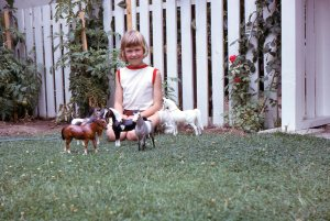 Little Dawn with plastic horses at Grandfather's house