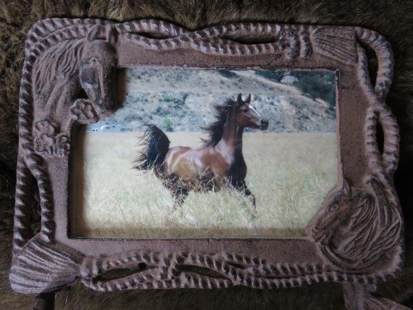 Aria Runnning in frame