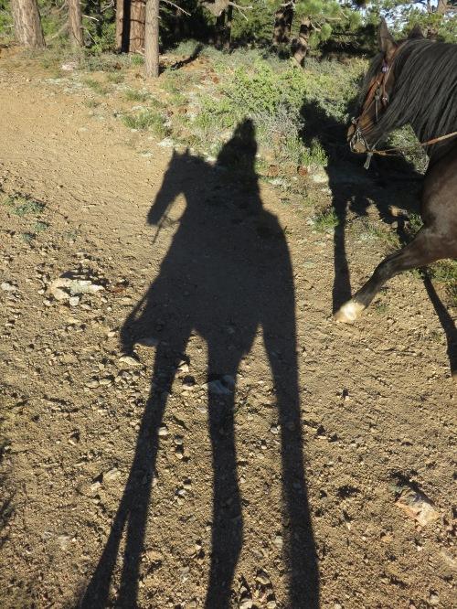 Long Shadows and Lad