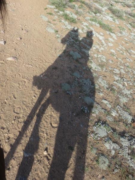 Aria Shadow, Pinos Ride