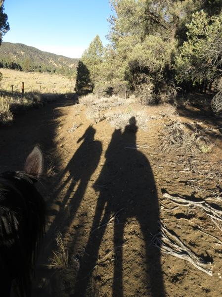 Seymour Flat Shadows