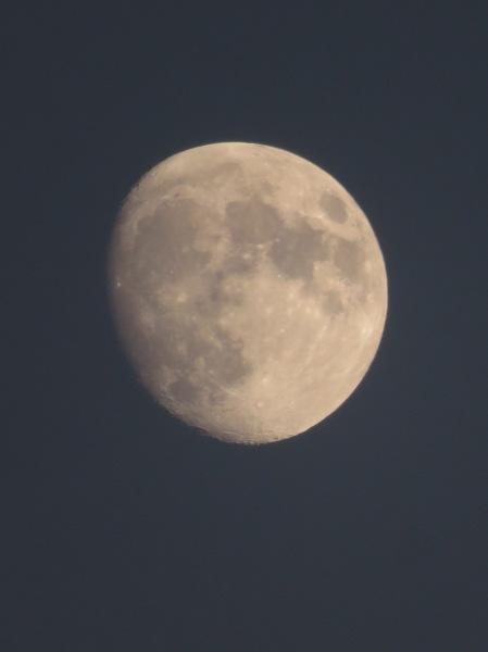 Nearly Full Moon